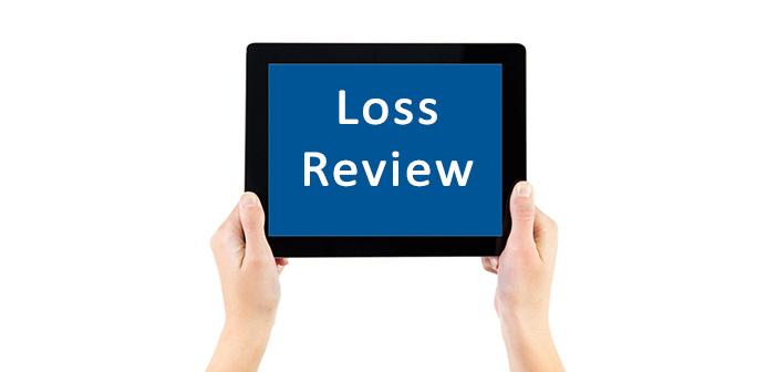 Loss Review